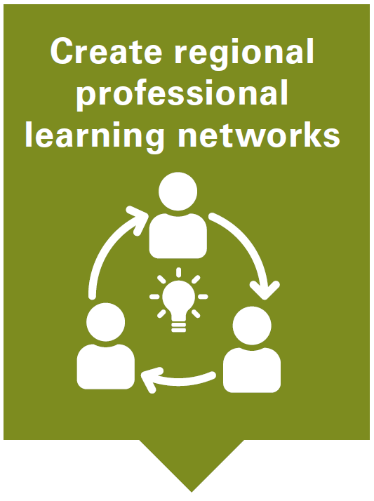 Create regional professional learning networks